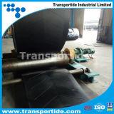 Il calore, corrosione, lubrifica il nastro trasportatore resistente resistente