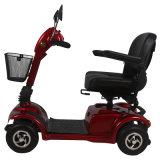 ZvgreenのFoldable Fuctionの熱い販売4の車輪の電気スクーター