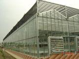 Алюминиевая рамка стекла туннеля парниковых один Span автоматической вентиляции
