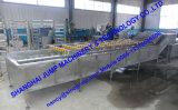 De Lopende band van de Puree van de Passiebloem van de Verkoop van de fabriek/Pulp Passionalflower die Machine maken