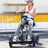 OEM ODM Hot Sale Balance Electric Scooter hoverboard