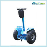 Ecorider Two Wheel Self Balancing Scooter elétrico Chariot