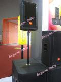 Spreker 15 '' van de Apparatuur van het Stadium van Skytone Stx825 PRO Audio Dubbele Professionele