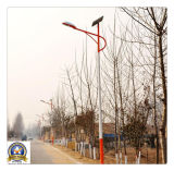 工場Price 5m 30W Solar LED Street Light