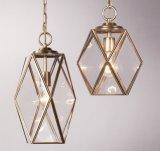 Lâmpadas de vidro do pendente do metal (WHG-877)