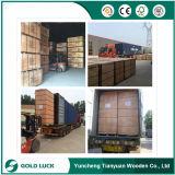 Linyi Comercial Chapas de madera Fabricante / Lápiz Cedar Kuering Bingtangor abedul okoumé