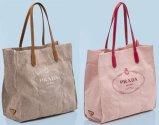 De aangepaste Promotie Katoenen van de Handtas van de Totalisator van het Canvas Zak van Sporten voor Strand