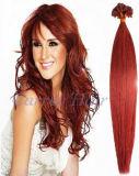 2013 Pre-Bonded Venda Quente Extensão de cabelo (PBHE3-18-05)