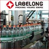 Macchina in bottiglia del succo di arancia della bevanda/macchina per l'imballaggio delle merci della spremuta