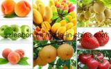 De grote Kokosnoot van de Mango van de Kwaliteit bereidt De Halende Machine van het Vruchtesap van te voren