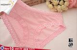 최신 형식 모양 감미로운 줄무늬 레이스 디자인은 소녀 삼각형 팬티 소녀 내복 Panty 모형을 송풍한다