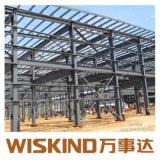 Intervenções estruturais de aço Span Duplo Edifício com Q235 Estrutura em aço para manual