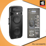 15 Zoll-Berufsdigital Ampere EQ iPod Bluetooth verdoppeln aktiver Lautsprecher PS-12215depd