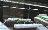 2018 Verlichting van de Vertoning van de LEIDENE de Nieuwe Juwelen van de Showcase Lichte