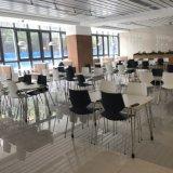 Design moderno restaurante de fast food barata mesa e cadeira