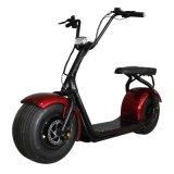 2018の脂肪タイヤ大人のための電気都市ココヤシのスクーター