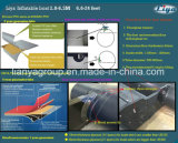 Шлюпка PVC Liya 2-8meter Китая раздувная с забортным двигателем