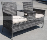 Outdoor Rattan Furniture Kd Style Chair Set (MTC-237)