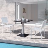 خارجيّة فناء أثاث لازم [إفّيل] يتعشّى بلاستيكيّة خشبيّة بيتيّة [هوتل بر] مكتب كرسي تثبيت وطاولة ([ج676])