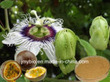 Флавон 3%~5% выдержки цветка страсти высокого качества для утихомиривая разума