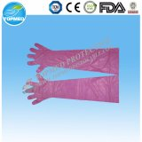 Disposable HDPE/LDPE Gloves Cleaning Gloves for Food Grade Manufacture