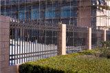 Clôture industrielle résidentielle de garantie décorative élégante de haute qualité de jardin