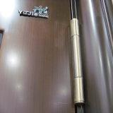 Porta de aço do metal da porta da segurança da porta do projeto de Turquia única