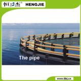Het Platform van de Visserij van het toerisme en van de Vrije tijd onder HDPE van het Dek Pijp