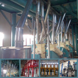 Maize Milling equipment