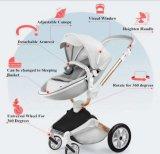 360 Grad Baby-Spaziergänger-hohe Landschaft drehend