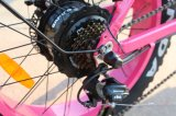 電気バイクを折る熱い販売48V