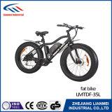 Ebikeのモデル電気自転車Lmtdf-27Lをアップデートした