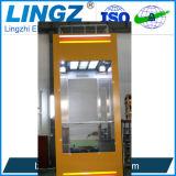 Lingz Панорамный стеклянный лифт