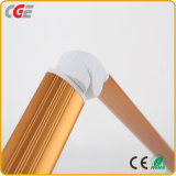 Tisch-Anzeigen-Buch-Licht der China-Fabrik-LED für Kursteilnehmer