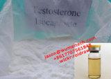 Testosterona Isocaproate de los esteroides de la testosterona de Sustanon 250 con recetas del laboratorio