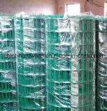 Высокое качество оцинкованной сварной проволочной сеткой