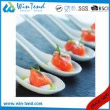 Mini porcelaine blanche ou colorée commerciale personnalisée de Tapas