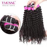 Trama crespa dei capelli dell'arricciatura dei venditori di Yvonne dei capelli di estensione brasiliana calda dei capelli umani