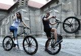 """新しいモデル26の""""インチカーボン折る自転車"""