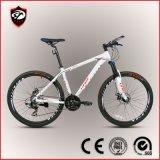 Shimano Tourney 24-скоростной алюминиевого сплава на горных велосипедах (европейского уровня качества изображения)