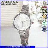 Vente chaude Watch Watch personnalisé en cuir en alliage d'affaires Watch (WY-135A)