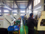 Encaixe de mangueira de Qingdao Bsp/adaptador hidráulicos masculinos (1B)
