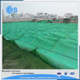 高品質のHDPEのプラスチック農業の緑の日曜日の陰のネット