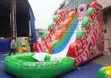 Diapositiva de agua inflable de la piscina grande de los cabritos de Lilytoys los 8*5m para la venta