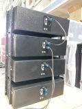 800W 12 дюйма Professiona Пассивный динамик для линейного массива (VT4888)