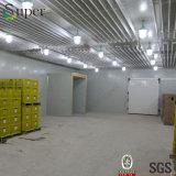 De Zaal van de diepvriezer/Koude Bergruimte voor Verkoop