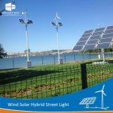 Fabricante de las delicias 2018 híbrido solar viento Calle luz LED
