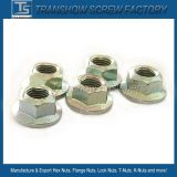 Tipo de prevalência porcas do torque de DIN980/V de hexágono