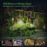 Het waterdichte OpenluchtLicht van de Ster van Red&Green van de Decoratie van Kerstmis van Kerstmis met Beste Prijs