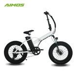 Vélo se pliant électrique à grande vitesse d'AMS-Tdn-02 48V/750W gros